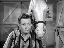 Mr Ed horse on left