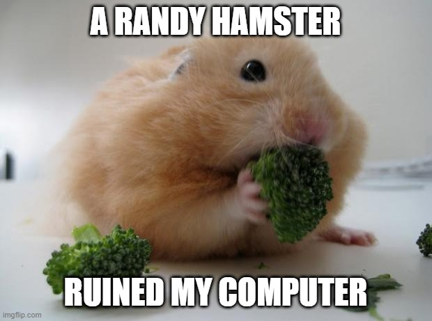 A randy hamster and 10 other Late Tax Return Excuses