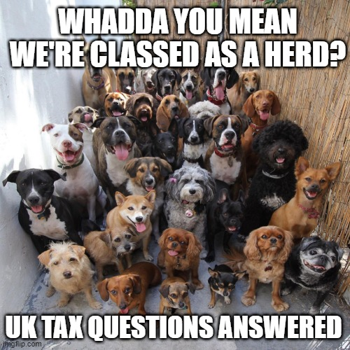 UK Tax Questions Answered by Shrewsbury Accountant No.34